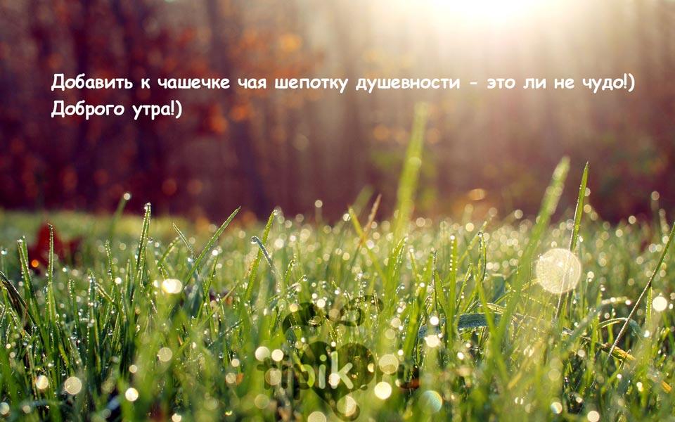 Доброе-утро-прекрасного-дня-и-настроения---скачать-картинки-4