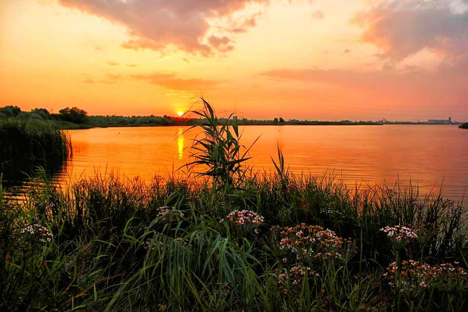 Интересные-картинки-лета,-вся-красота-природы-15