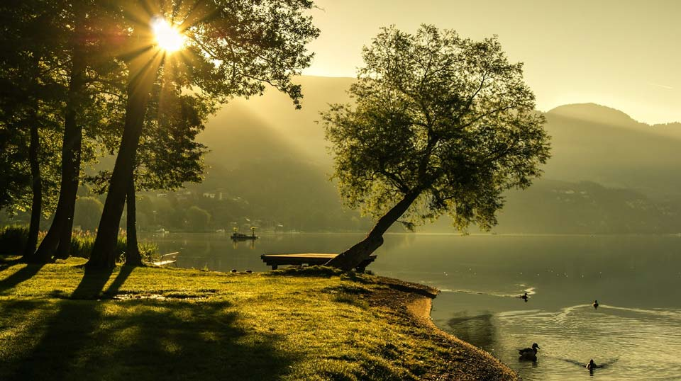 Интересные-картинки-лета,-вся-красота-природы-2
