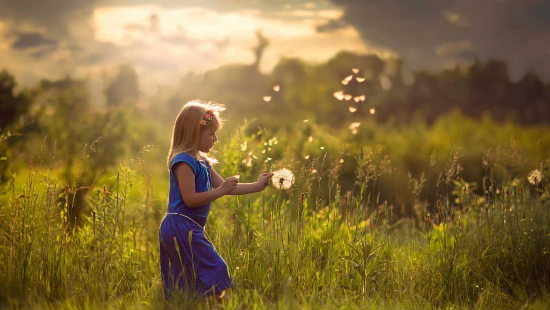 Интересные-картинки-лета,-вся-красота-природы-4