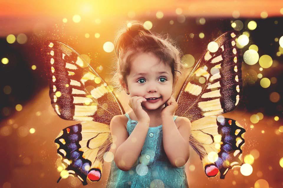Красивые-и-интересные-картинки-бабочек---чудные-и-удивительные-11