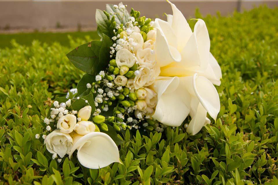 Красивые-картинки-цветов-и-букетов---удивительная-подборка-1