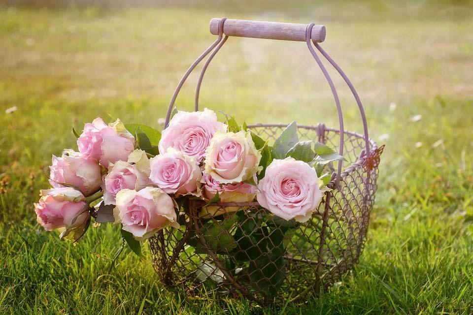 Красивые-картинки-цветов-и-букетов---удивительная-подборка-8