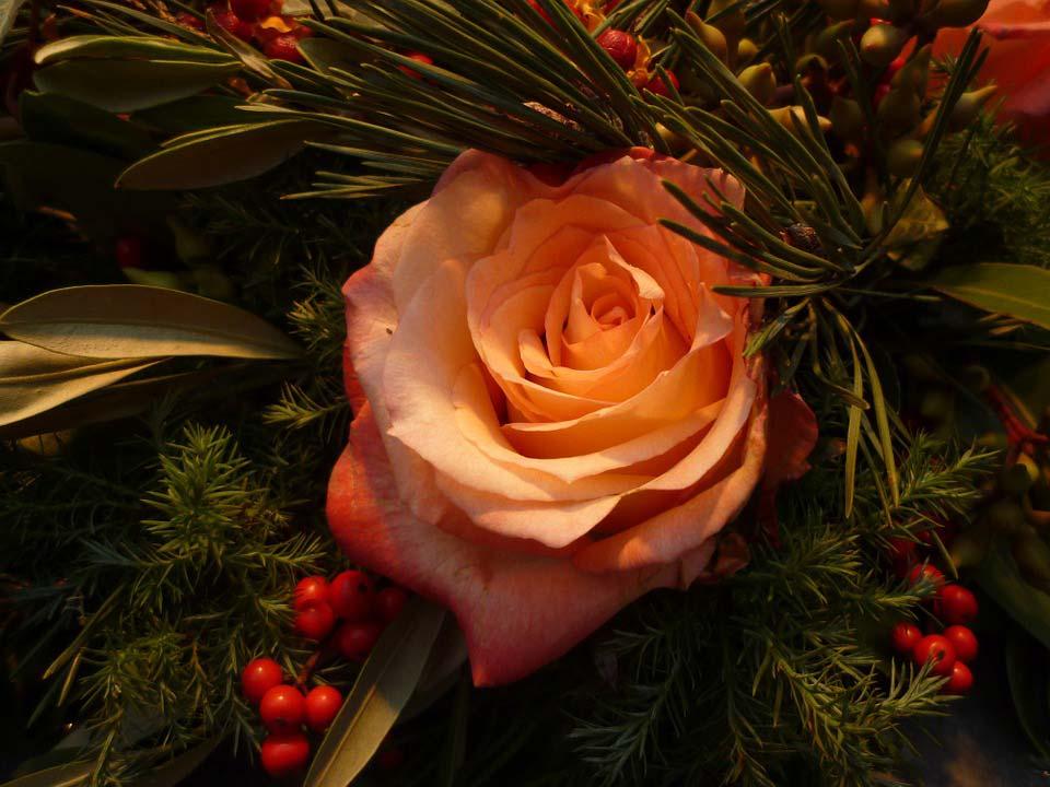 Красивые-картинки-цветов-и-букетов---удивительная-подборка-9