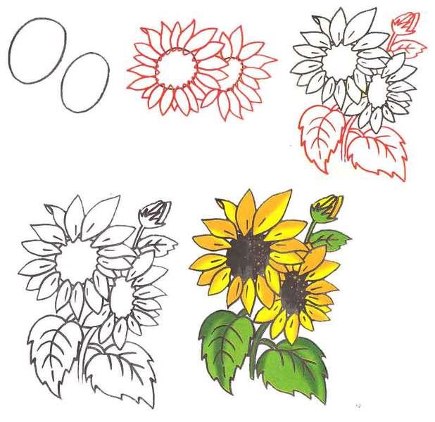 Очень красивые детские и интересные картинки цветов для детей - сборка 2