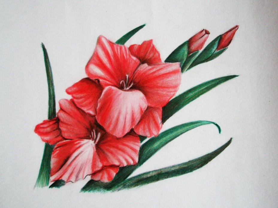 Очень красивые детские и интересные картинки цветов для детей - сборка 4