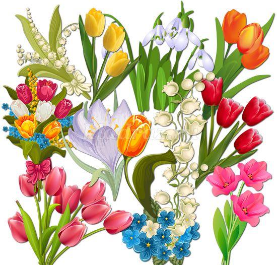 Очень красивые детские и интересные картинки цветов для детей - сборка 9