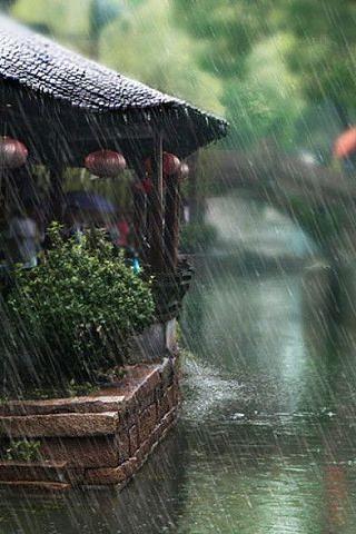 Красивые картинки дождя на заставку телефона - подборка 2018 3