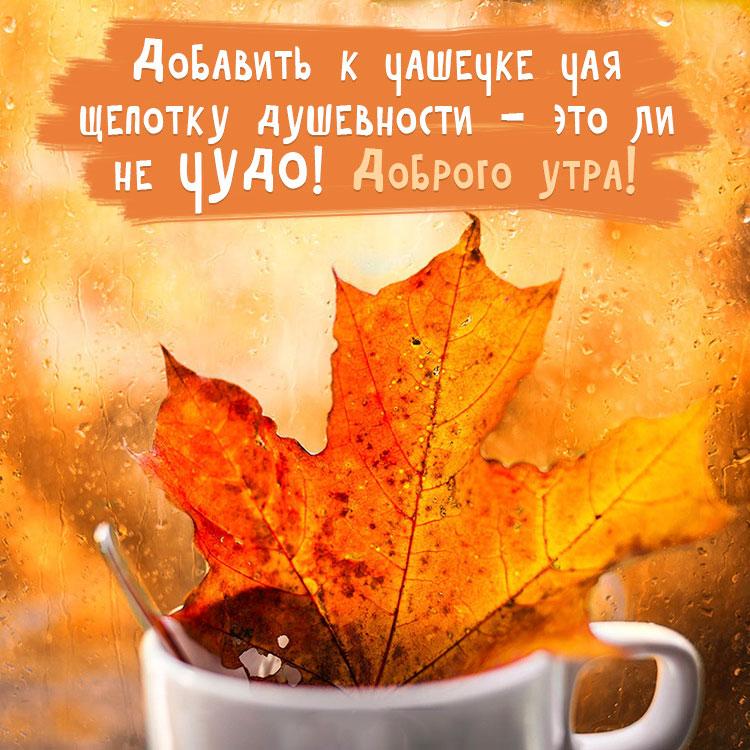 Прикольные картинки доброе утро осеннего дня - милые открытки 5