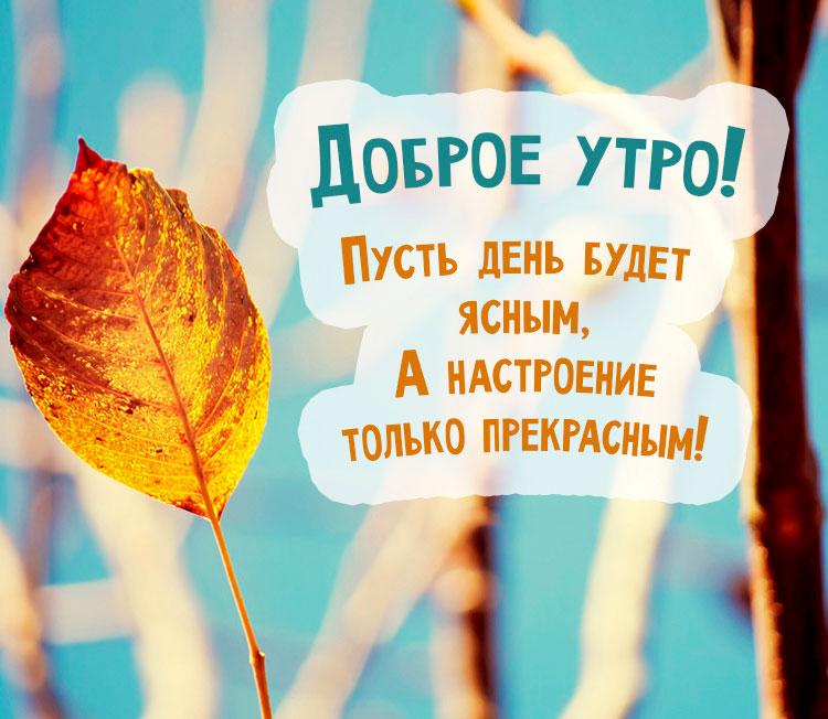 Прикольные картинки доброе утро осеннего дня - милые открытки 6
