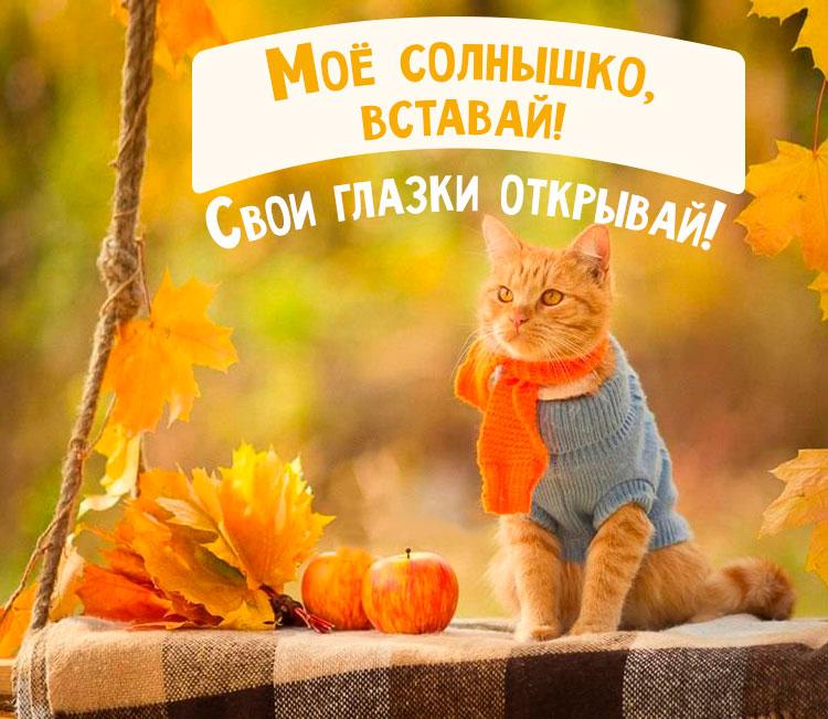 Прикольные картинки доброе утро осеннего дня - милые открытки 8