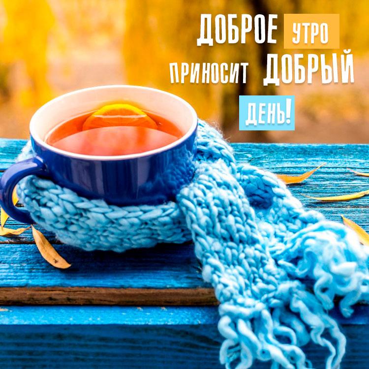 Прикольные картинки доброе утро осеннего дня - милые открытки 10