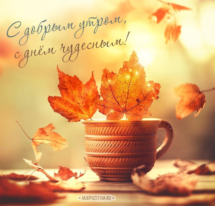 С добрым утром октября - самые красивые открытки, картинки 4