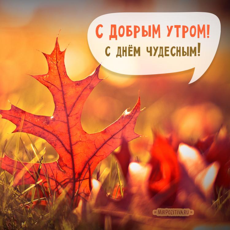 С добрым утром октября - самые красивые открытки, картинки 5