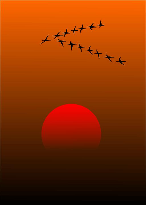 Красивые картинки заката Солнца - самые восхитительные 4
