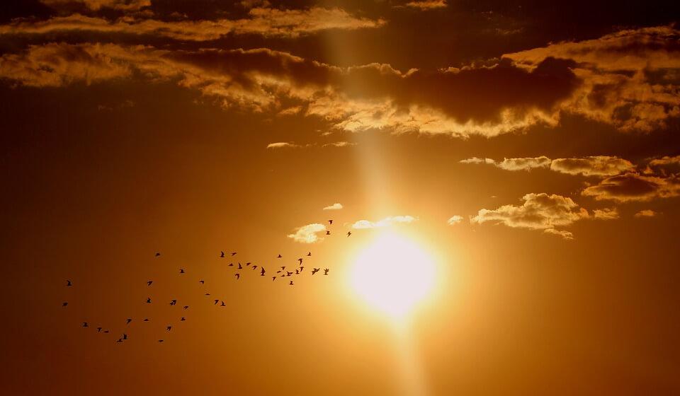 Красивые картинки заката Солнца - самые восхитительные 16