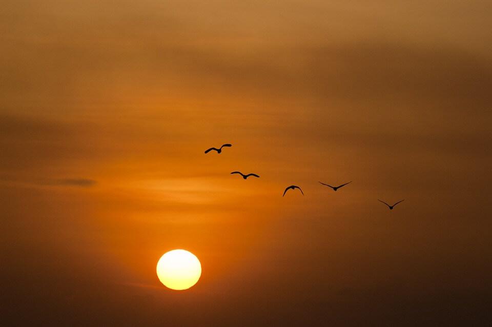 Красивые картинки заката Солнца - самые восхитительные 12