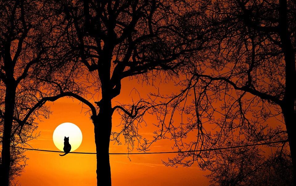Красивые картинки заката Солнца - самые восхитительные 19
