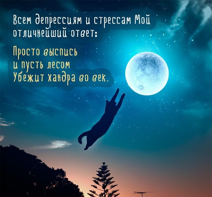 """""""Спокойной ночи моя хорошая"""" - красивые картинки и открытки 1"""