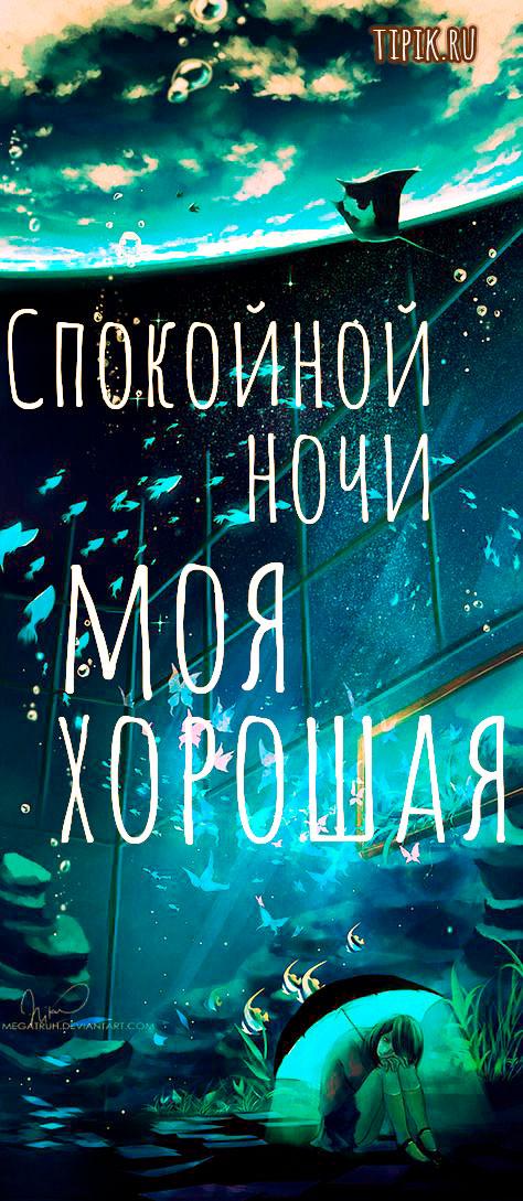 """""""Спокойной ночи моя хорошая"""" - красивые картинки и открытки 8"""