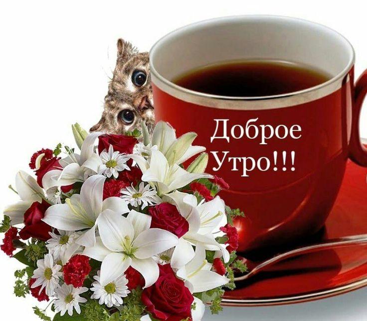 Добрые и красивые картинки с добрым утром, пожелания 2