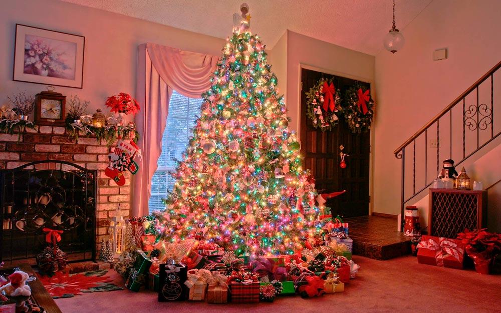 Прикольные и смешные картинки про новогоднюю елку - подборка 3