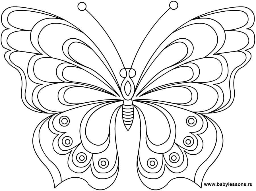 Красивые рисунки, картинки бабочки для детей - коллекция 1
