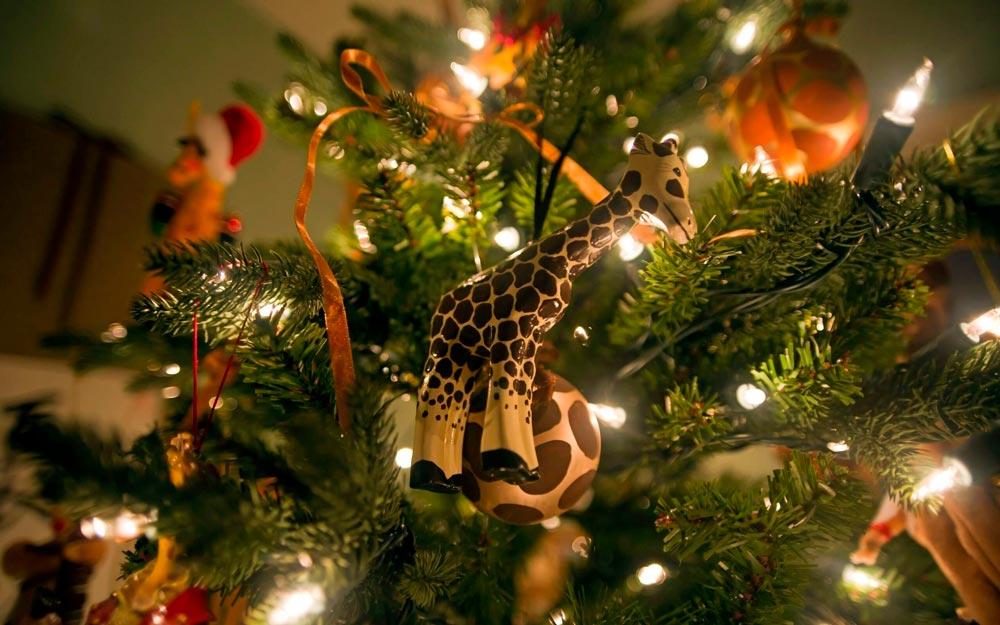 Прикольные и смешные картинки про новогоднюю елку - подборка 1