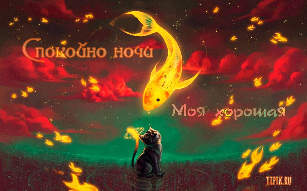 """""""Спокойной ночи моя хорошая"""" - красивые картинки и открытки 10"""