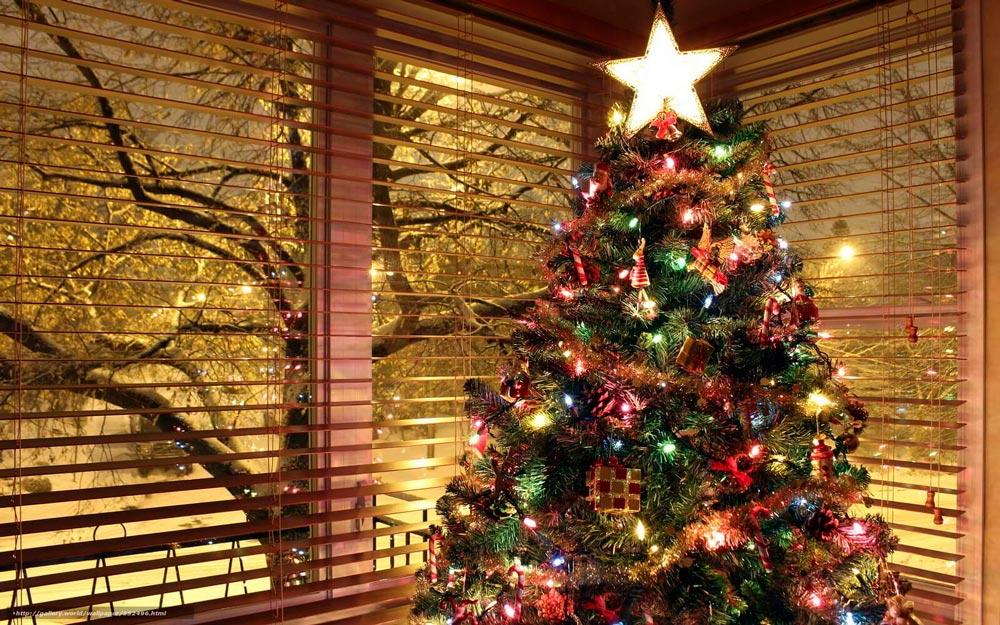 Прикольные и смешные картинки про новогоднюю елку - подборка 5