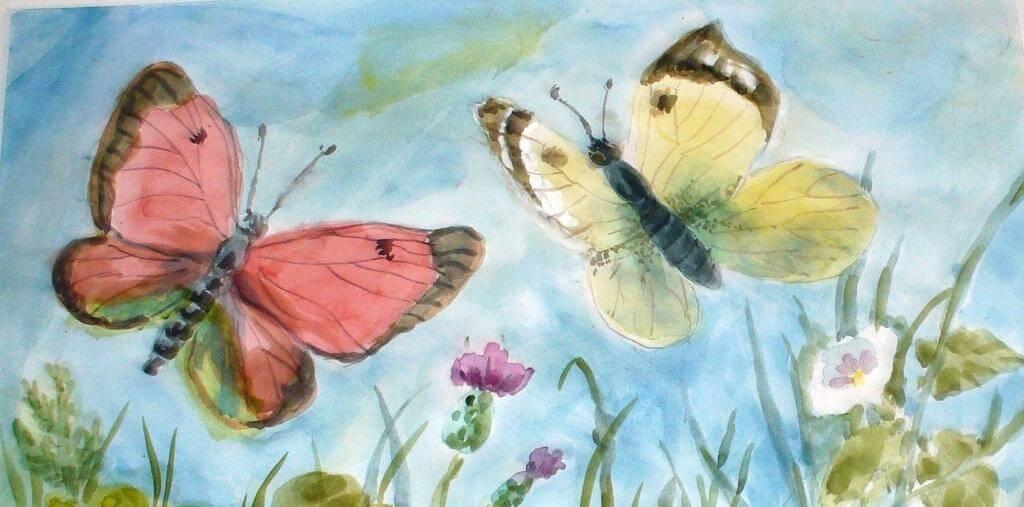 Красивые рисунки, картинки бабочки для детей - коллекция 11
