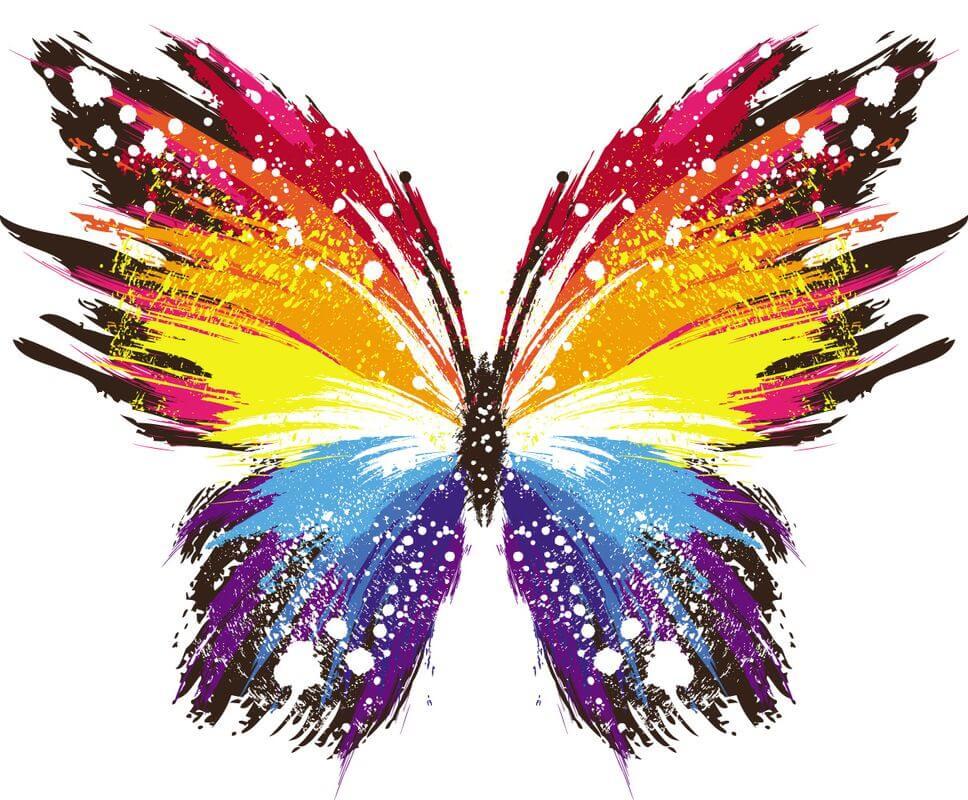 Красивые рисунки, картинки бабочки для детей - коллекция 14