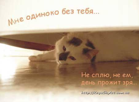 """Не могу без тебя"" картинки и открытки с надписями 8"