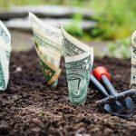 Прикольные и интересные картинки денег, деньги картинки - сборка 12