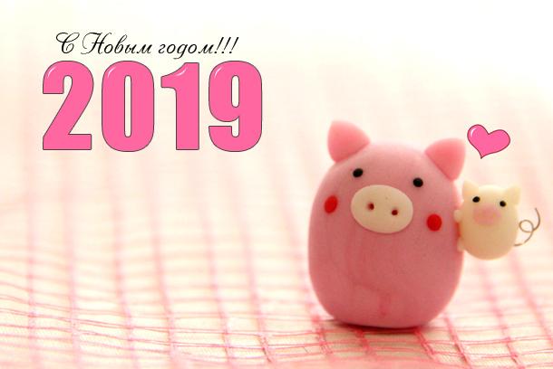С новым 2019 годом свиньи - прикольные картинки поздравления 8