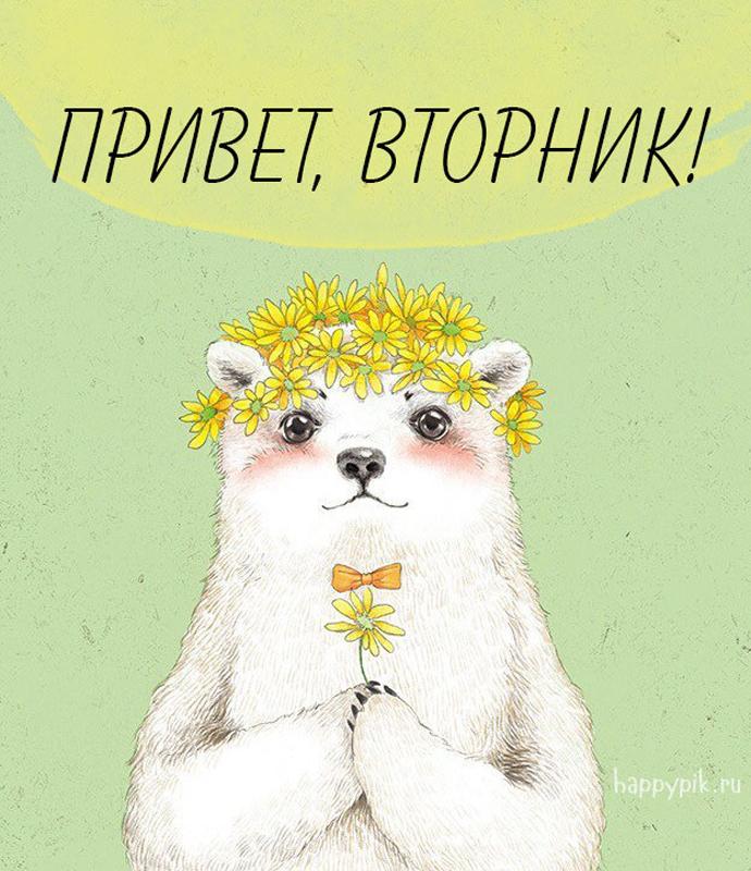 Доброе утро вторник - самые красивые картинки, открытки 11