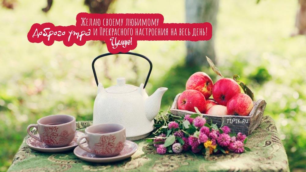 Добрые и красивые картинки с добрым утром, пожелания 16