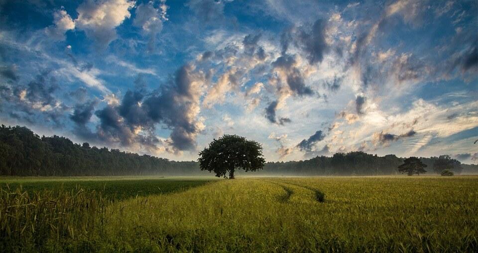 Чистое небо - удивительные картинки и фотографии 14