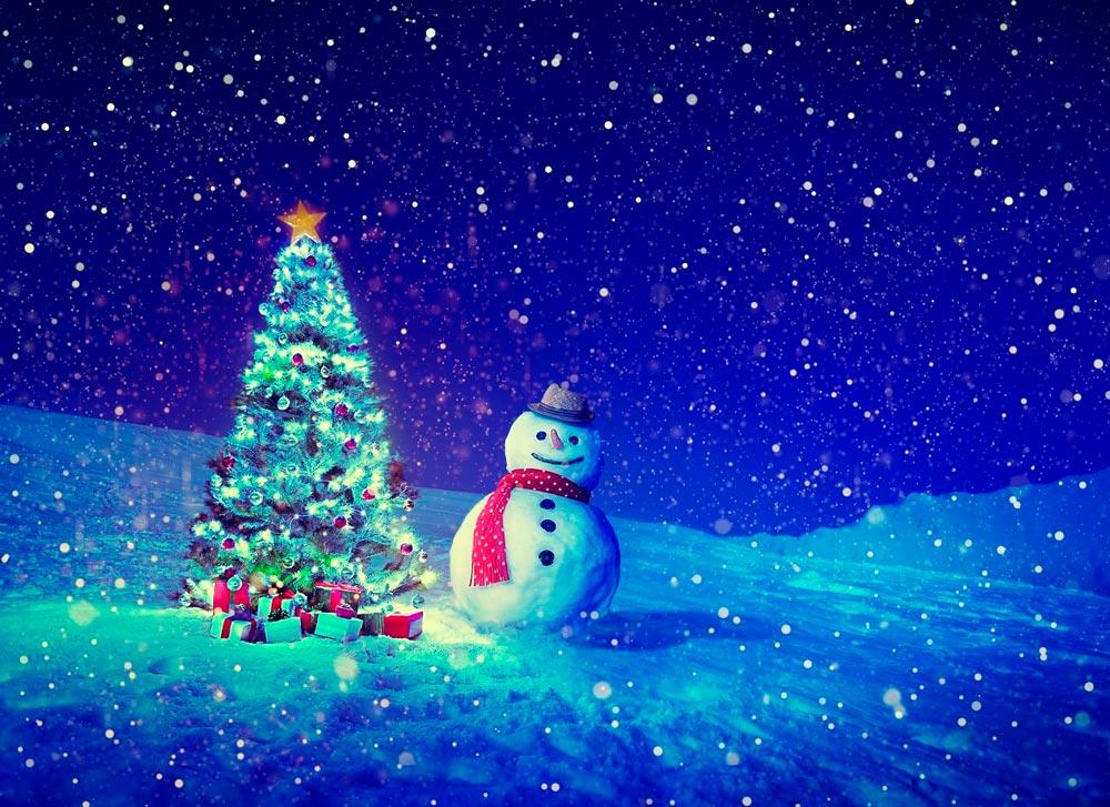 Прикольные и смешные картинки про новогоднюю елку - подборка 14