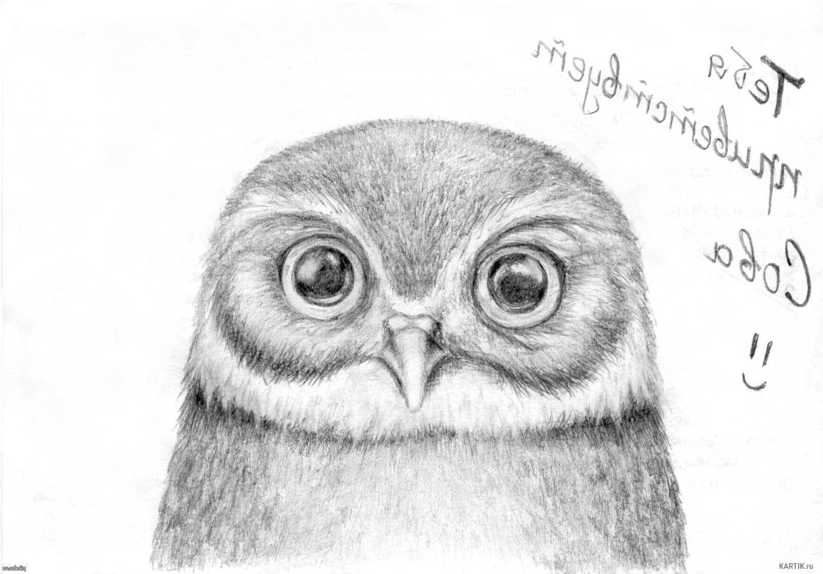Красивые и милые картинки карандашом от руки - подборка (23 фото) 19