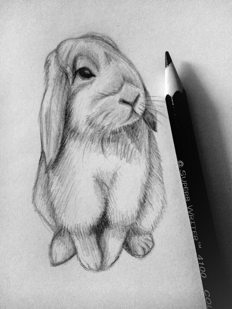 Красивые и милые картинки карандашом от руки - подборка (23 фото) 21