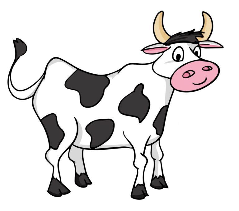 Марта открытка, корова картинки для детей на прозрачном фоне