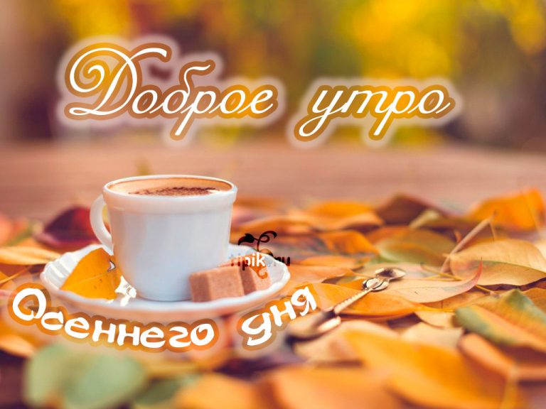 Открытка с октябрем с добрым утром хорошим днем