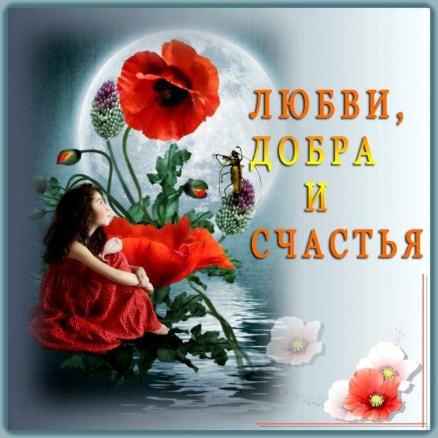 Месяцами, открытки с пожеланием любви счастья и добра