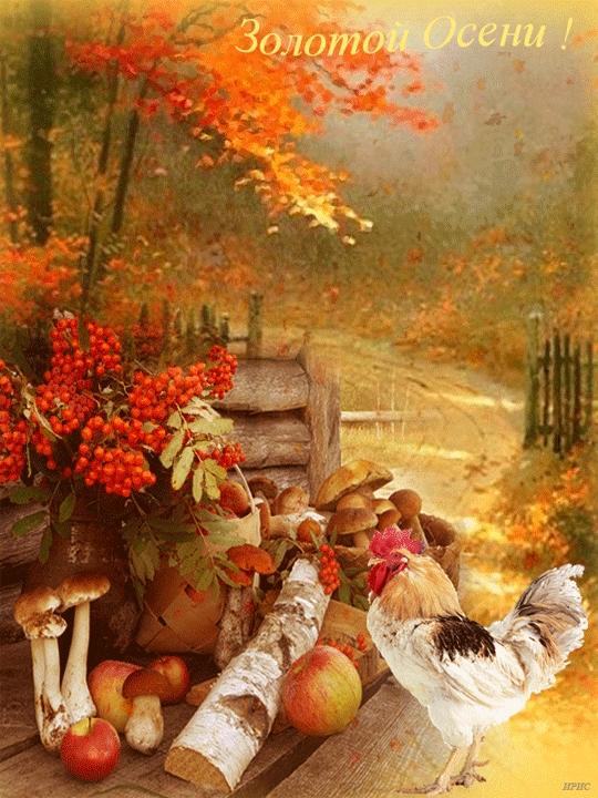 Осенние анимационные открытки