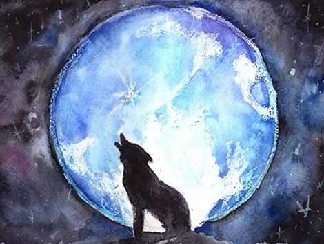 Волк воющий на луну картинка, фото вой волка скачать