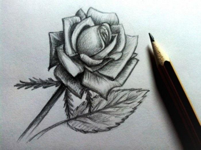 Идеи для рисования простым карандашом - подборка