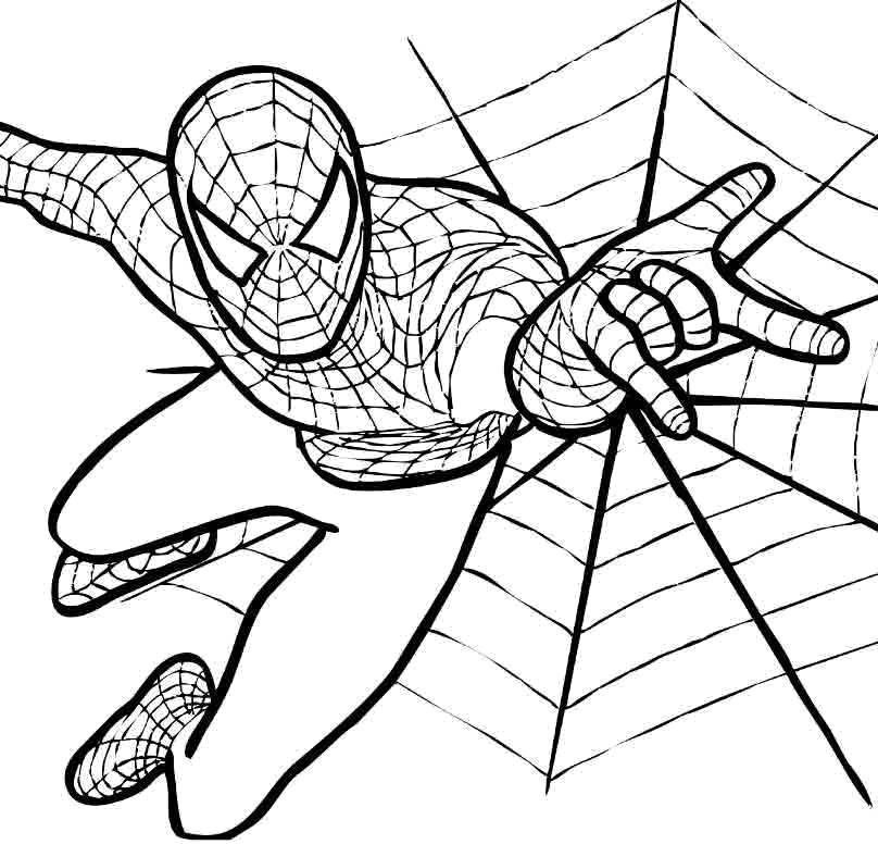 Человек паук картинка раскраска