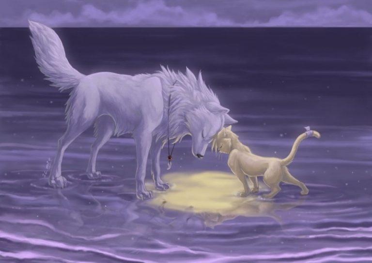 Волк и кошка картинки
