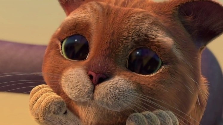 Картинки кот из шрека, вас
